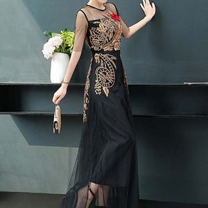 Embroidered Tulle sheer sleeve dress